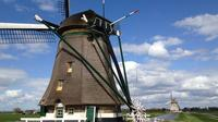Amsterdam Shore Excursion: Private Day Trip to The Hague, Rotterdam and Delft in One Day