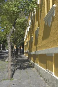 San Angel Photo Walk in Mexico City