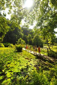 Tahiti Island Tour Including Venus Point, Taharaa View Point and Vaipahi Gardens