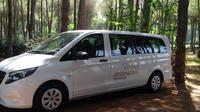 One-Way Shared Transfer: Alanya to Antalya Airport Private Car Transfers