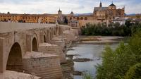 Córdoba Culture and Architecture Tour