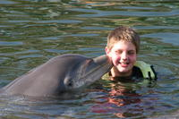 2-Day Miami South Beach Adventure from Orlando with Optional Dolphin Swim