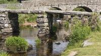 Magical Dartmoor: One Day Luxury Private Guided Tour from Cornwall