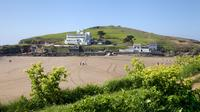 South Devon Coast and Country luxury private guided tour from Cornwall