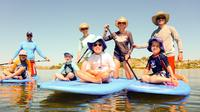 Stand-Up Paddleboarding Lesson plus Guided Paddle on Perth's Swan River