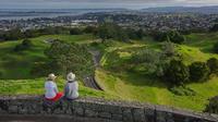 Full-Day Grand Auckland Volcanoes Tour