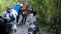 4-Day Darwin Footprints Tour