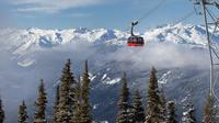 Whistler Peak 2 Peak Gondola Admission Ticket
