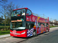 Athens Shore Excursion: City Sightseeing Athens and Piraeus Hop-On Hop-Off Tour