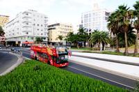 City Sightseeing Las Palmas de Gran Canaria Hop-On Hop-Off Tour