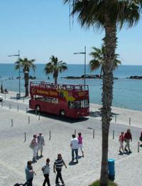 City Sightseeing Paphos Hop-On Hop-Off Tour