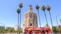 Excursión turística en autobús con paradas libres por Sevilla