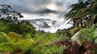 Volcanic Valley Self Guided Walking and Hiking at Waimangu