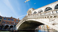 From Lake Garda: Special Venice trip with private tour of the Lagoon by boat