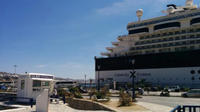 Delos Tour  from Mykonos Cruise Port Private Car Transfers