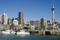 Auckland Harbour Lunch Cruise*