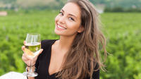 Half-Day Sparkling Franciacorta Wine Tour With Gourmet Lunch and Private Dr