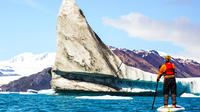 Bear Glacier Paddleboarding With Icebergs And Jetboat Access