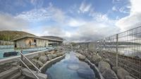 Golden Circle and Laugarvatn Fontana Geothermal Baths Tour from Reykjavik