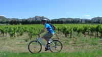 Private Guided Bike Tour Around Saint Rémy and the Provencal Countryside from Avignon