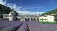 Private Guided Walking Tour in the Hills of Provence Including Gordes and Sénanque Abbey from Avignon