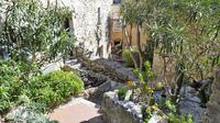 Villefranche Shore Excursion: Private Tour of Eze, Monaco and the Riviera corniches