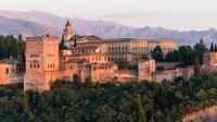 Alhambra Palace and Albaycin Neighborhood Private Tour From Malaga