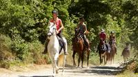 Half-Day Horseback Ride in Tuscany
