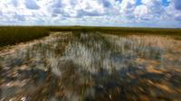 90-Minute Private Air Boat Tour of Everglades National Park