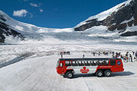 Columbia Icefield Tour including the Glacier Skywalk from Jasper