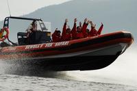 Howe Sound Sea Safari Cruise*
