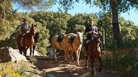 Horse Riding Tour of Grazalema Natural Park in Cadiz