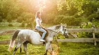 Horseback Riding Tour: Ride Through Vineyards and Beautiful Villages