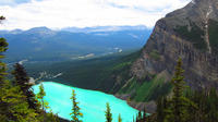 Private Departure Transfer: Lake Louise to Calgary Airport Private Car Transfers