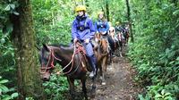 Horseback Riding At 100% Aventura Park