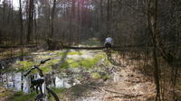 Cycling Tour in National Park in Warsaw
