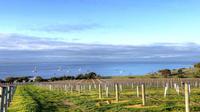 Kangaroo Island Shore Excursion: Food And Wine Trail Tour