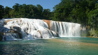 Agua Azul And Misol Ha Waterfalls Half-Day Tour From Palenque
