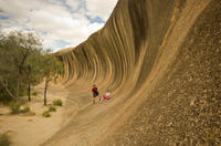4-Day Tour from Perth Including Margaret River, Valley of the Giants Tree Top Walk and Albany