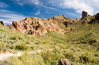 Self-Drive Twilight Tour through the Sonoran Desert