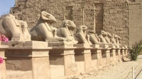 Avenue of Sphinx at Karnak Temple, Luxor*