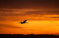 Aswan Private Departure Transfer*