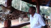 Nairobi Private Small-Group Guided Tour