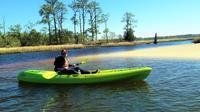 Kayak Eco-Tour Of First Landing State Park