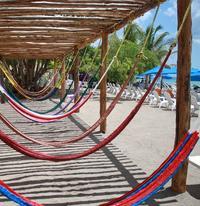 Cozumel Shore Excursion: Playa Uvas Private Beach Pass