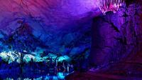 Guilin Half-Day Private City Tour to Reed Flute Cave and Elephant Trunk Hill