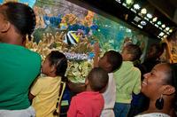 New England Aquarium Admission