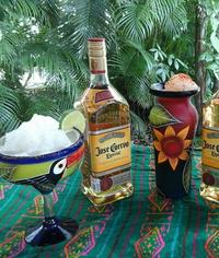Tequila 101 by Jose Cuervo at Discover Mexico Park