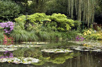 Le Havre Shore Excursion: Private Tour of Giverny, Rouen and Honfleur
