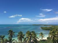 Isla Contoy and Isla Mujeres Tour from Cancun